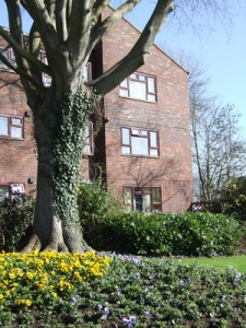 sheltered housing